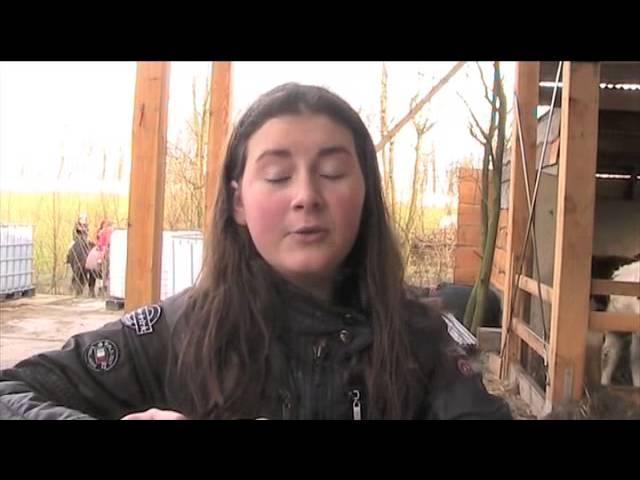 Zoetermeer, Erasmus College – Het Bewustzijn Van Dieren