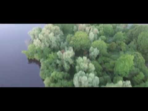 Natuur in Lelystad   Zuigerplasbos